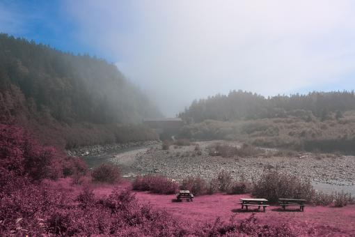 Free Stock Photo of Fundy Park Scenery - Pink HDR