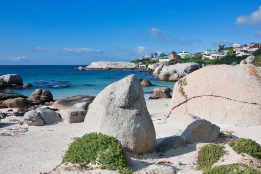 Free Stock Photo of Boulders Beach Coastal Scenery