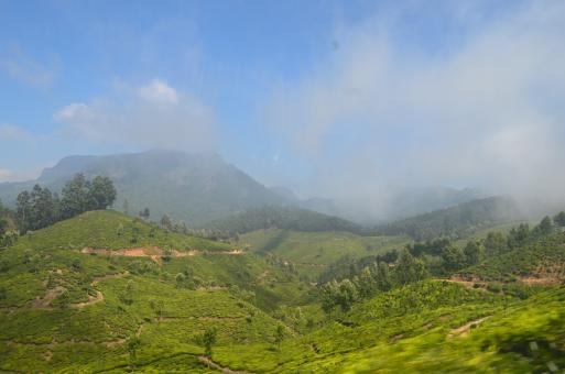 Free Stock Photo of Munnar Hill Station