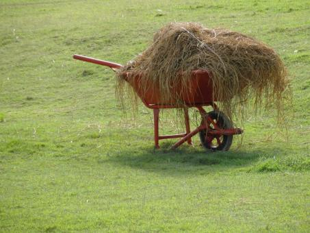 Free Stock Photo of Wheelbarrow Full of Hay