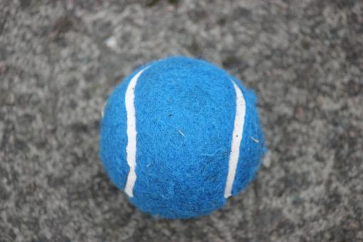 Free Stock Photo of Blue Tennis Ball