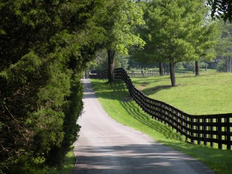 Free Stock Photo of Country Road & Fence
