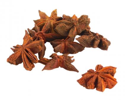 Free Stock Photo of Star Anise