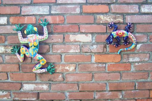 Free Stock Photo of Frog and Lizard on Brick Wall