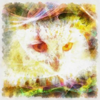 Free Stock Photo of Owl Illustration