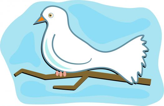 Free Stock Photo of Dove Clipart
