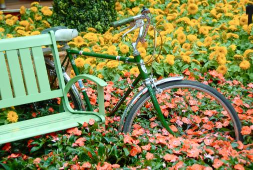 Free Stock Photo of Bicycle in the Flower Garden