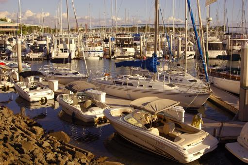 Free Stock Photo of Boats in the Marina