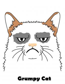 Free Stock Photo of Grumpy cat clipart
