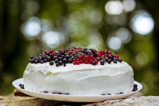 Free Stock Photo of Fresh berry cake