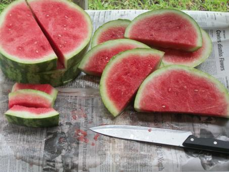 Free Stock Photo of Sliced Watermelon