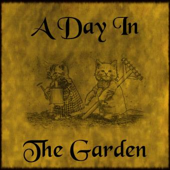 Free Stock Photo of A Day In The Garden