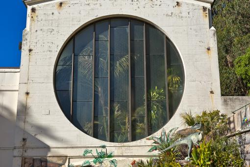 Free Stock Photo of Round Tropical Window - HDR