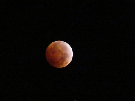 Free Stock Photo of Red Moon