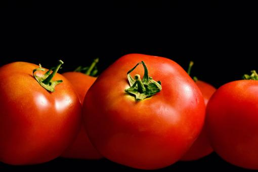 Free Stock Photo of Red tomatoes
