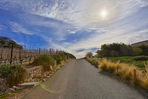 Free Stock Photo of Sonoma Country Road - HDR
