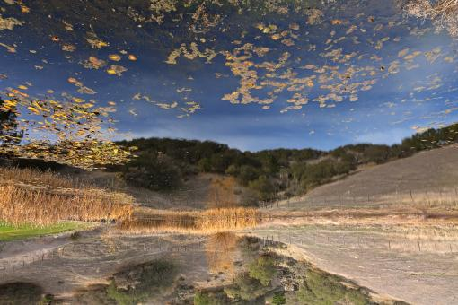 Free Stock Photo of Sonoma Valley Pondscape - HDR