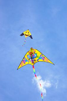 Free Stock Photo of kite flying