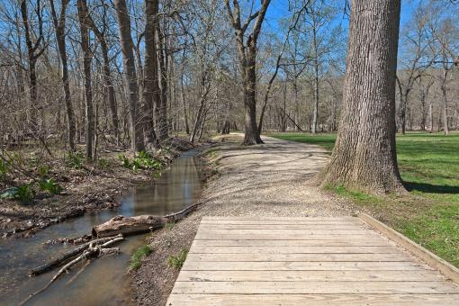 Free Stock Photo of Great Falls Forest Path - HDR