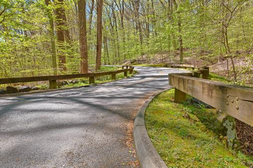 Free Stock Photo of Rock Creek Park Road - HDR