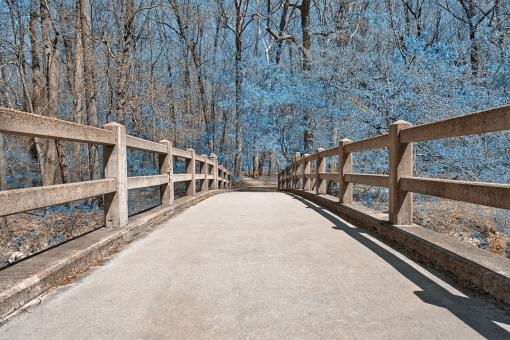 Free Stock Photo of Bridge to Winter - HDR