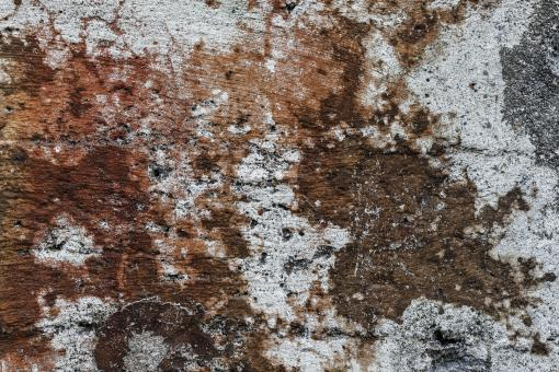 Free Stock Photo of Gritty Wall Texture