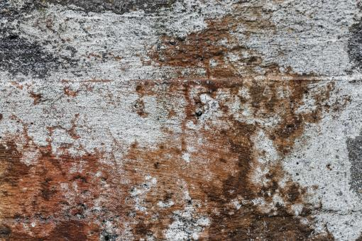 Free Stock Photo of Grunge Wall Texture