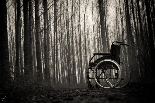 Free Stock Photo of Wheelchair in the woods