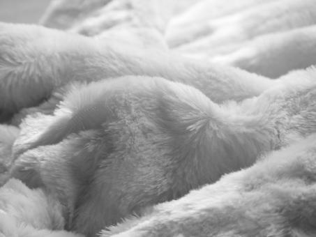 Free Stock Photo of Soft Blanket Texture