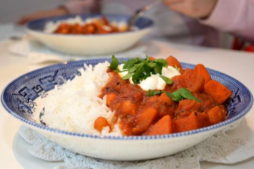 Free Stock Photo of Stew with rice