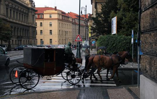 Free Stock Photo of Horse Carriage