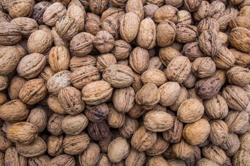 Free Stock Photo of Walnuts background texture