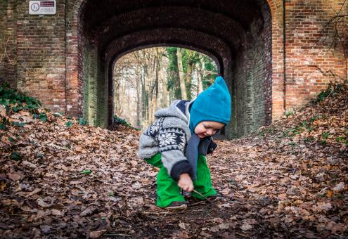 Free Stock Photo of Little boy and autumn leaves