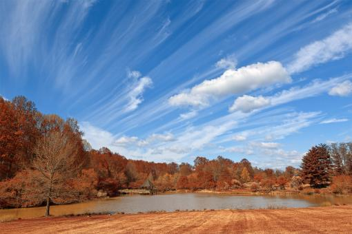Free Stock Photo of Meadowlark Gardens - Autumn Warm HDR