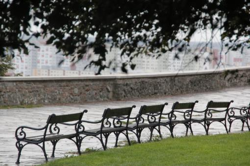 Free Stock Photo of Benches in park