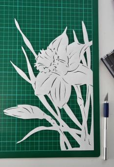 Free Stock Photo of Narcissus paper cutting