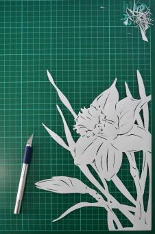 Free Stock Photo of Daffodil paper cutting