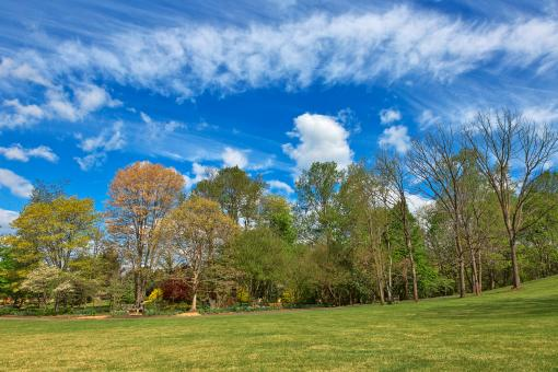 Free Stock Photo of Meadowlark Gardens - HDR