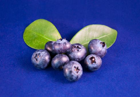 Free Stock Photo of Blueberries fruit