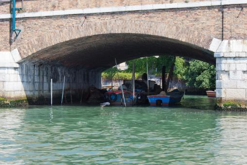 Free Stock Photo of Boats moored under bridge