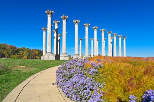 Free Stock Photo of Capitol Arboretum Columns - HDR