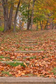 Free Stock Photo of Seneca Fall Steps - HDR