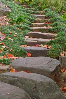 Free Stock Photo of Arboretum Stepping Stones - HDR
