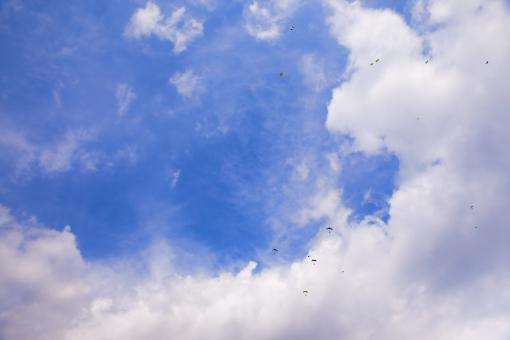 Free Stock Photo of skydivers in blue sky