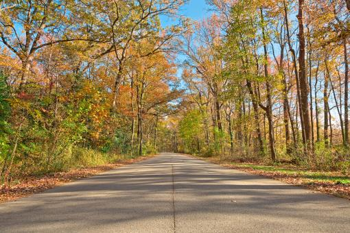 Free Stock Photo of North Point Fall Road - HDR