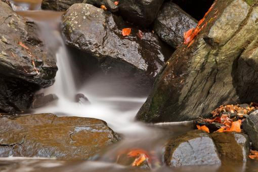 Free Stock Photo of Glen Artney Stream