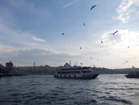 Free Stock Photo of A View from Golden Horn