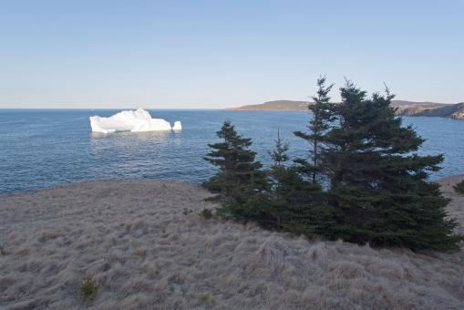 Free Stock Photo of Atlantic Canada Iceberg Close to Land