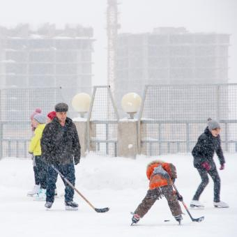 Free Stock Photo of Ice Hockey in the Snow