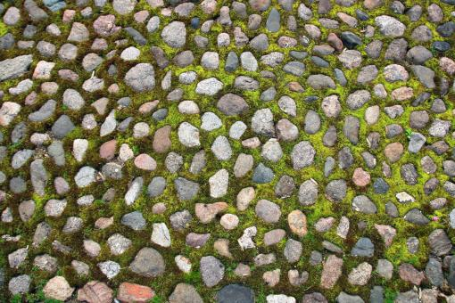 Free Stock Photo of Stone with Grass